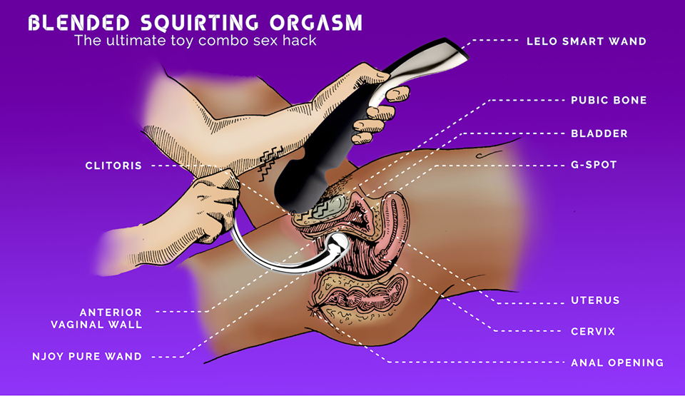 HAL reccomend The anatomy of the squirting orgasm