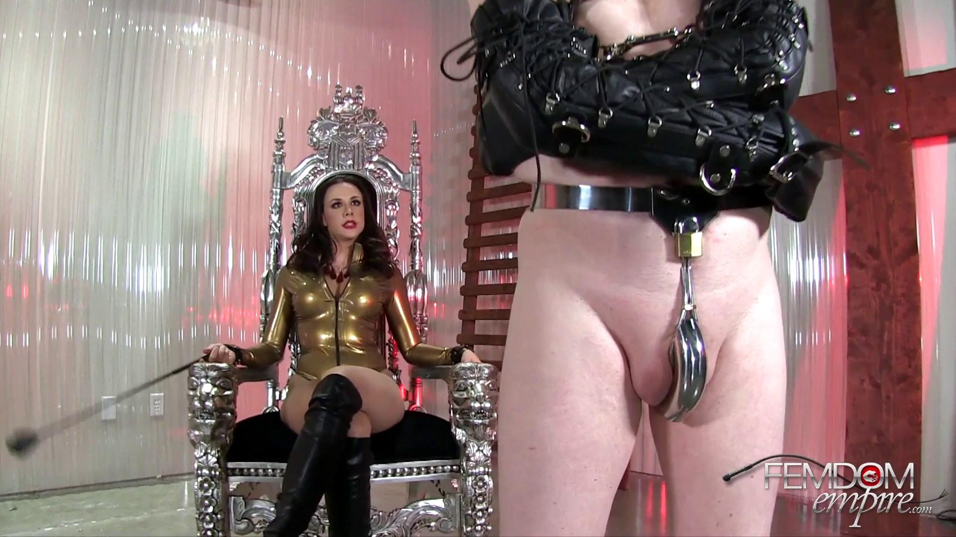 Meatball reccomend Extreme female domination stories